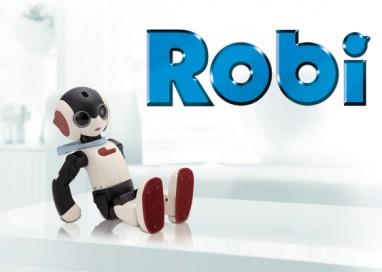 Meet Robi: The Interactive Robotic Companion that Speaks Manglish