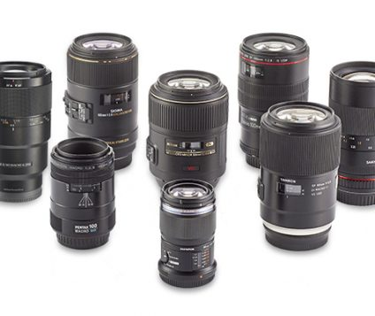 Macro lenses group test – Which one takes the crown?
